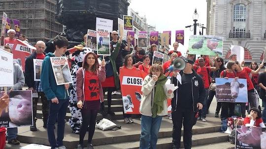 Marche pour la fermeture des abattoirs à Londres