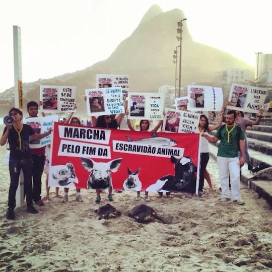 Marche pour la fermeture des abattoirs à Rio de Janeiro