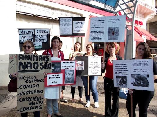 Marche pour la fermeture des abattoirs à Sao Paulo