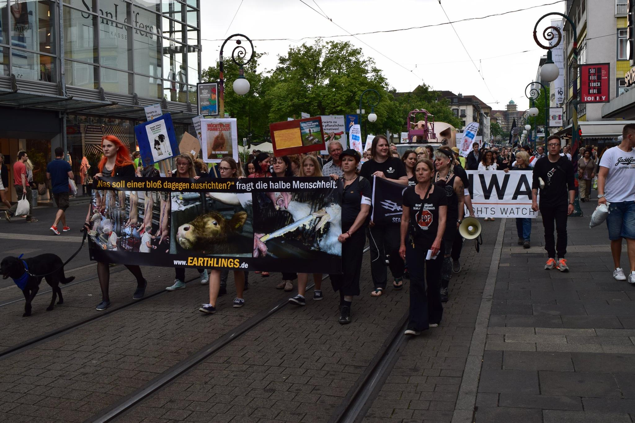 Photo de la Marche pour la fermeture des abattoirs 2015 à Cassel