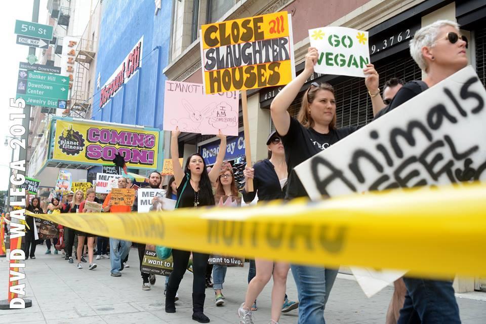Photo d'une action pour la fermeture des abattoirs 2015 à Los Angeles