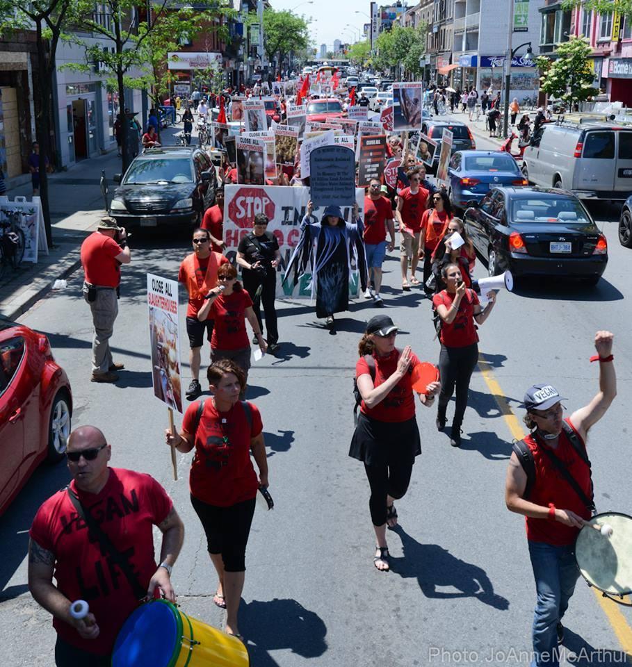 Photo de la Marche pour la fermeture des abattoirs 2015 à Toronto
