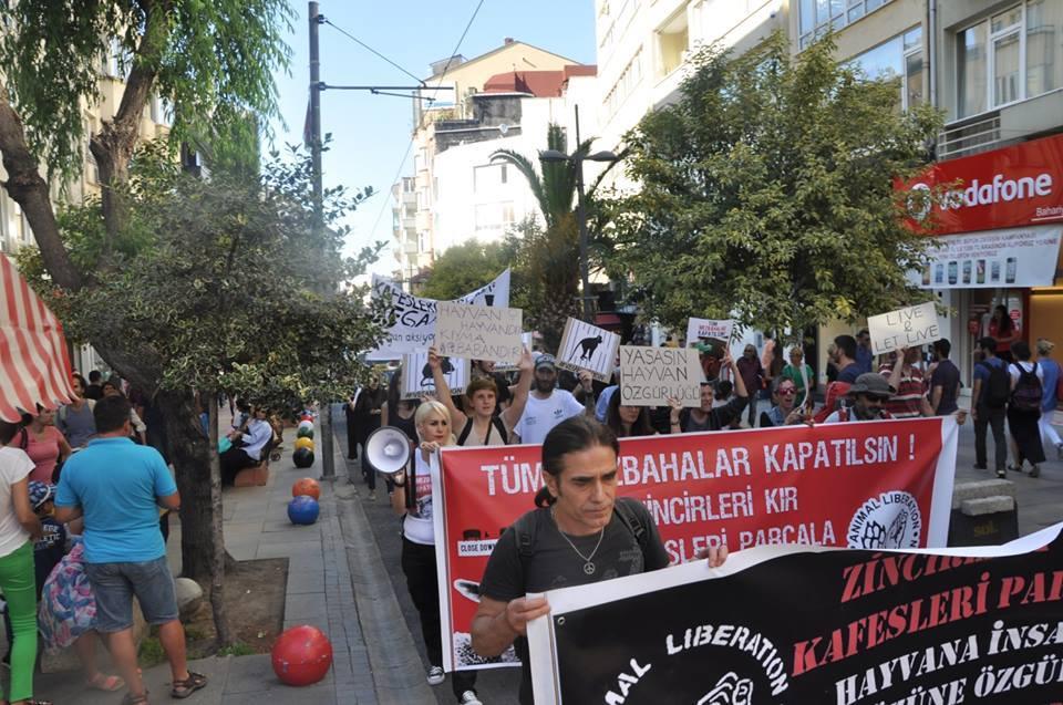 Photo de la Marche pour la fermeture des abattoirs 2016 à Istanbul