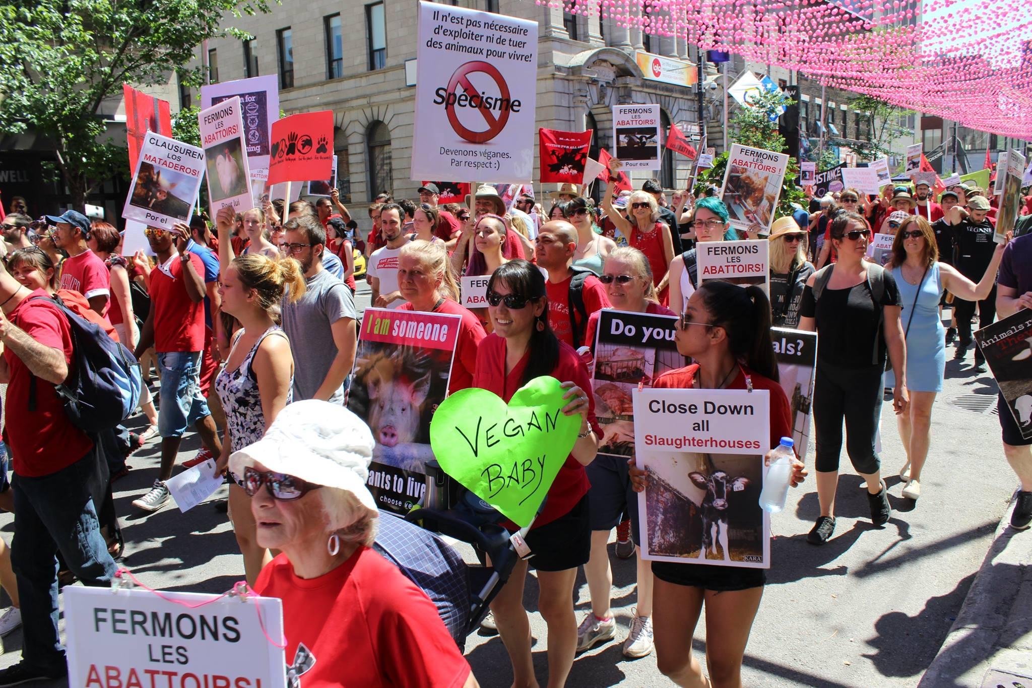 Photo de la Marche pour la fermeture des abattoirs 2016 à Montréal