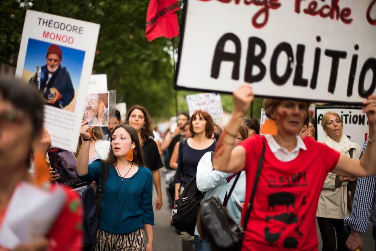 Photo de la Marche pour la fermeture des abattoirs 2016 à Toulouse