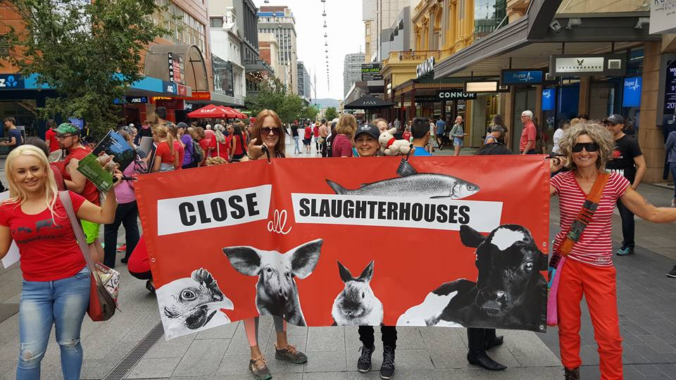 Adelaide March To Close All Slaughterhouses 2017 picture