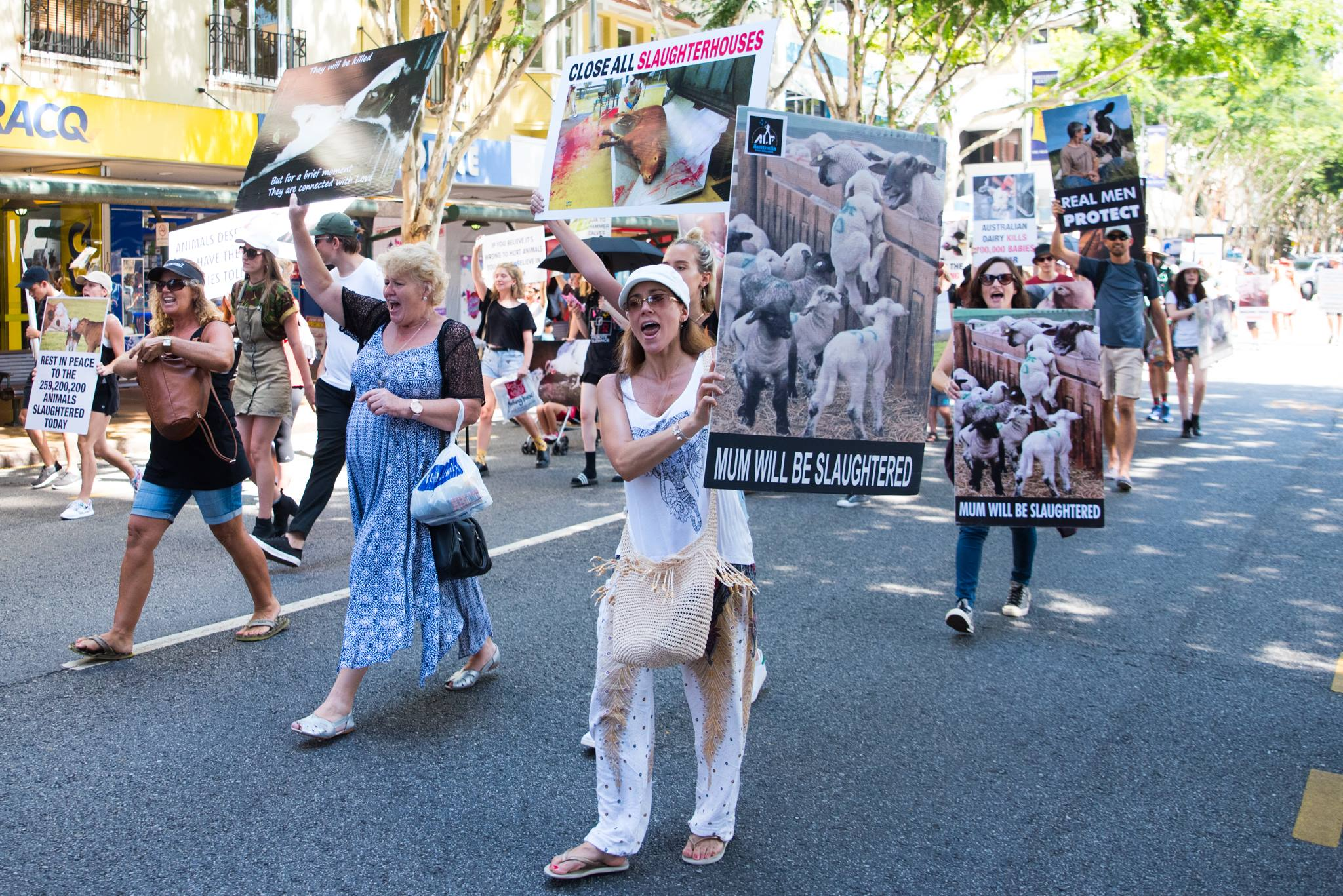 Brisbane March To Close All Slaughterhouses 2017 picture