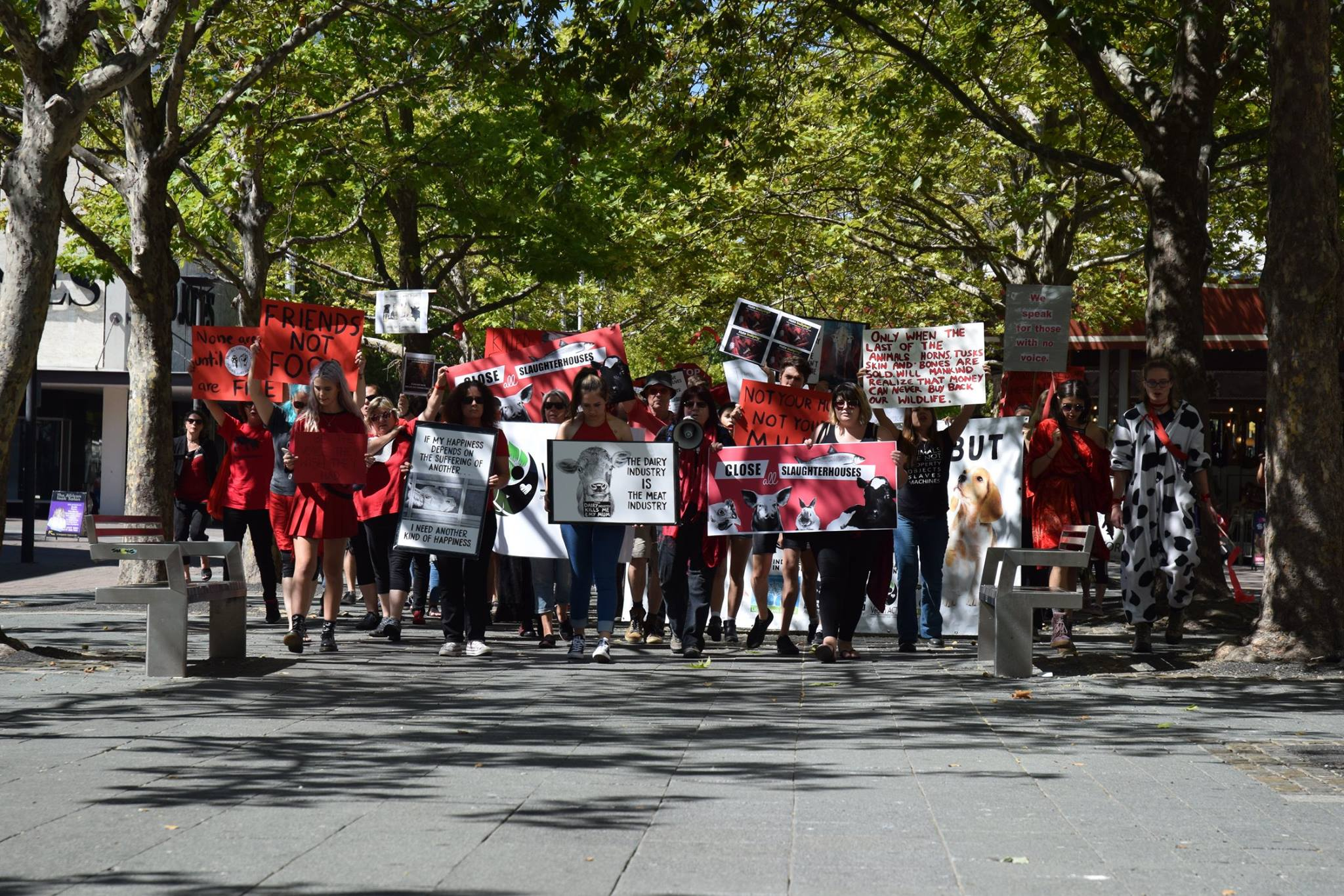 Canberra March To Close All Slaughterhouses 2017 picture