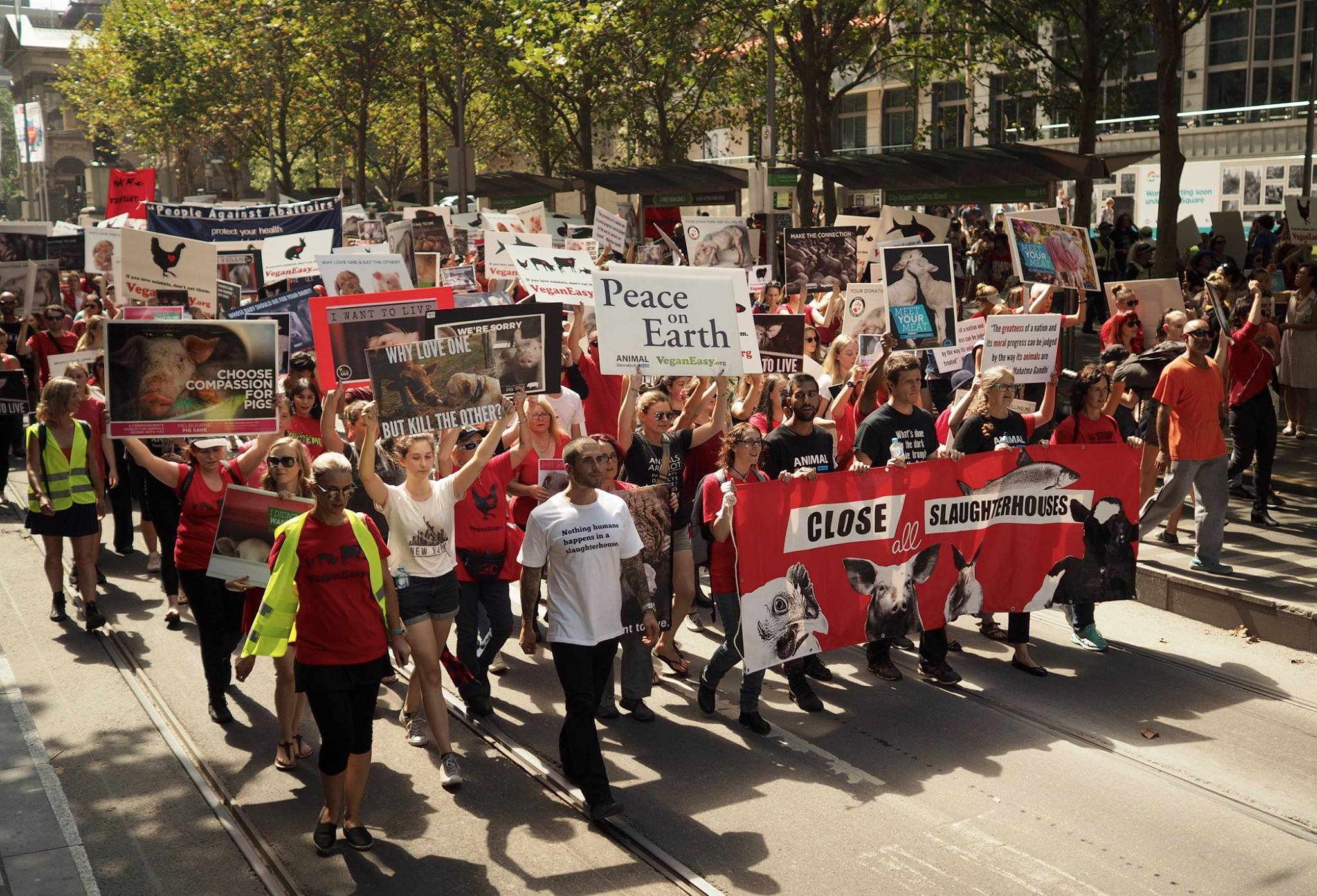 Melbourne March To Close All Slaughterhouses 2017 picture