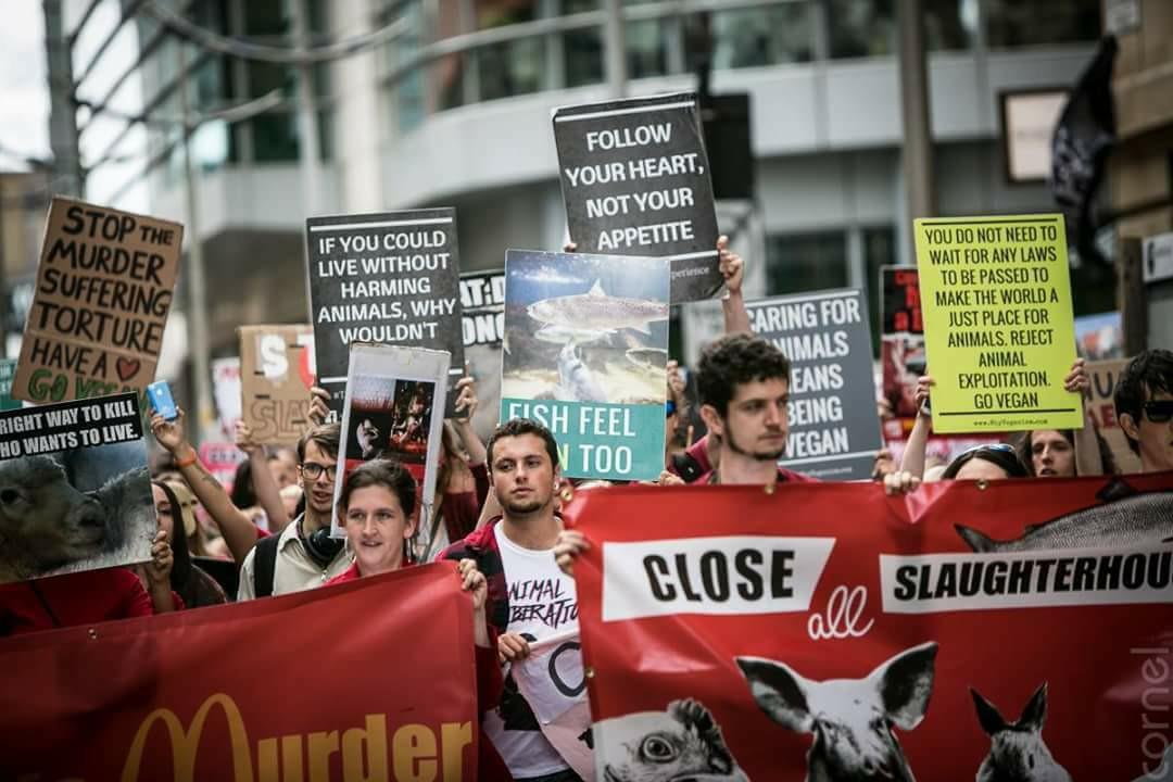 Photo de la Marche pour la fermeture des abattoirs 2017 à Manchester
