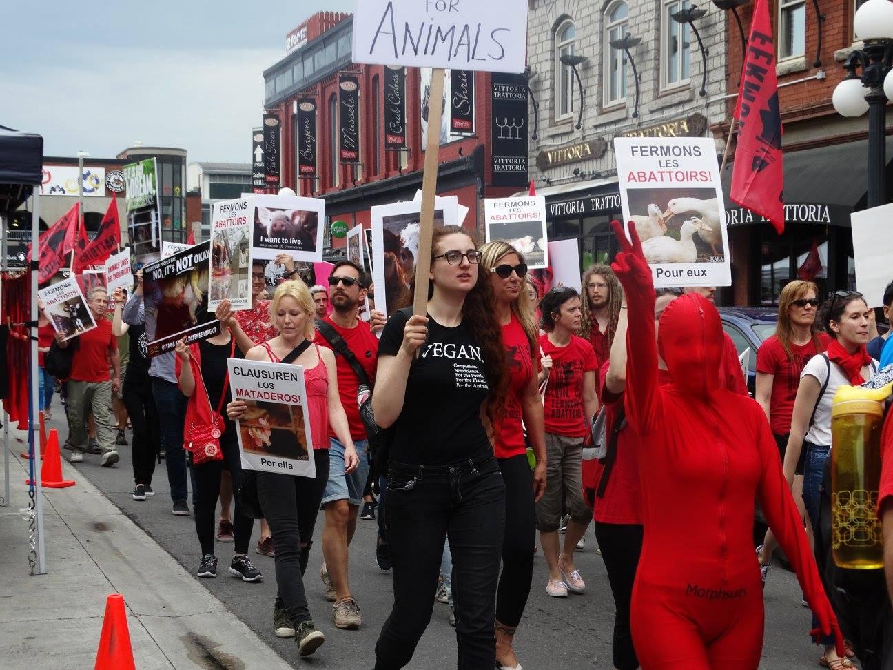 Photo de la Marche pour la fermeture des abattoirs 2017 à Ottawa
