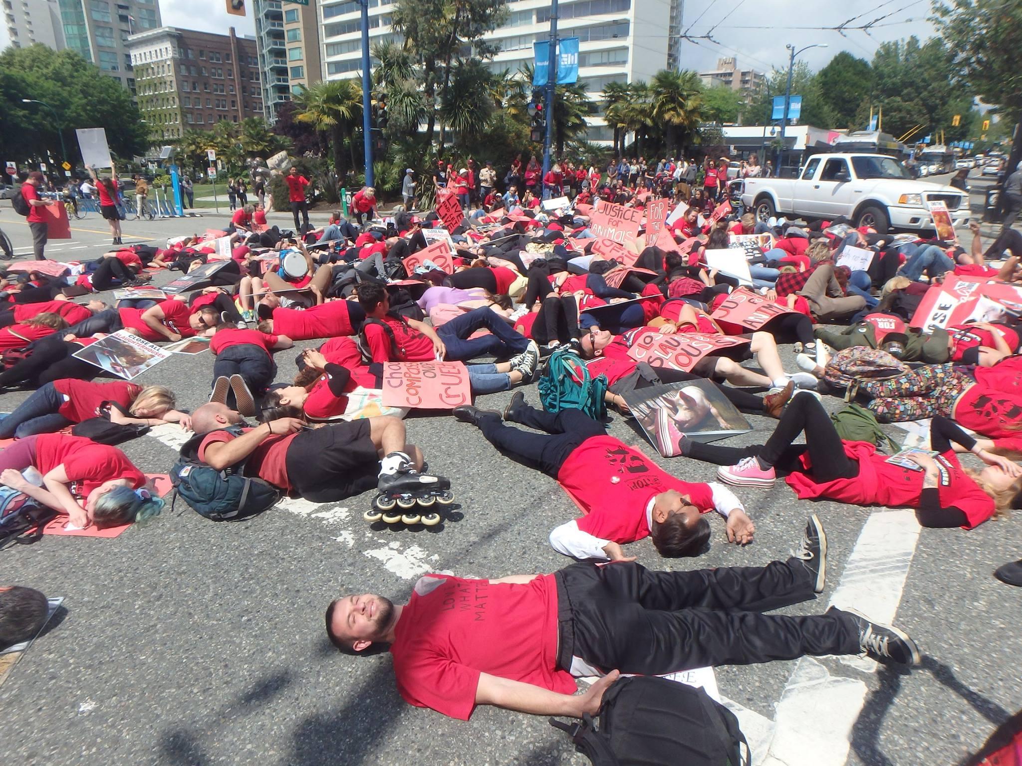 Photo de la Marche pour la fermeture des abattoirs 2017 à Vancouver