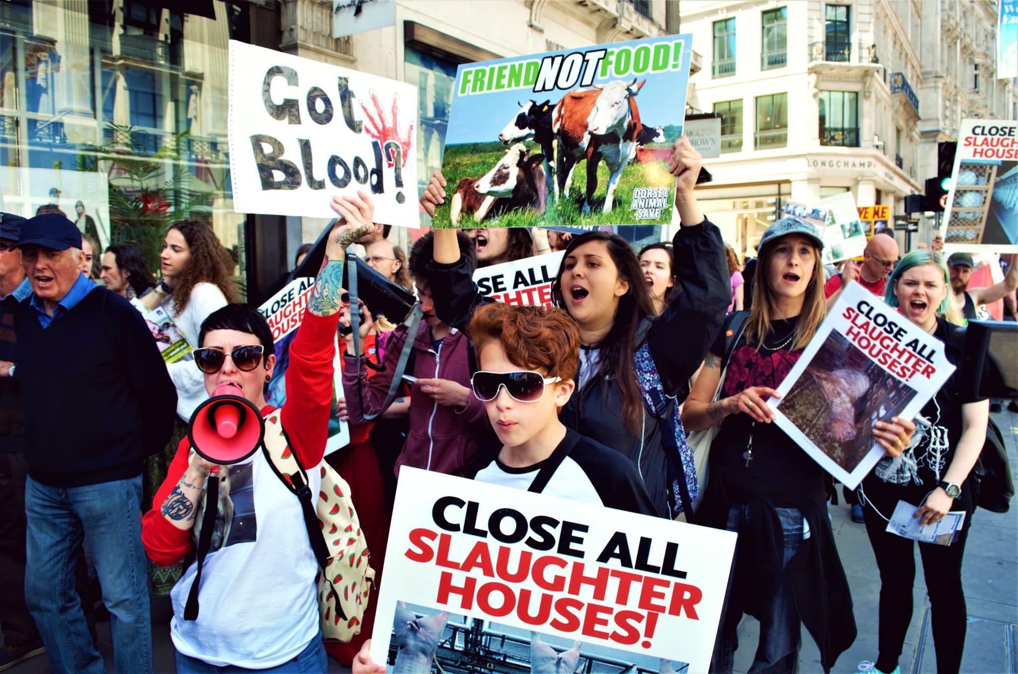 Photo de la Marche pour la fermeture des abattoirs 2017 à Londres