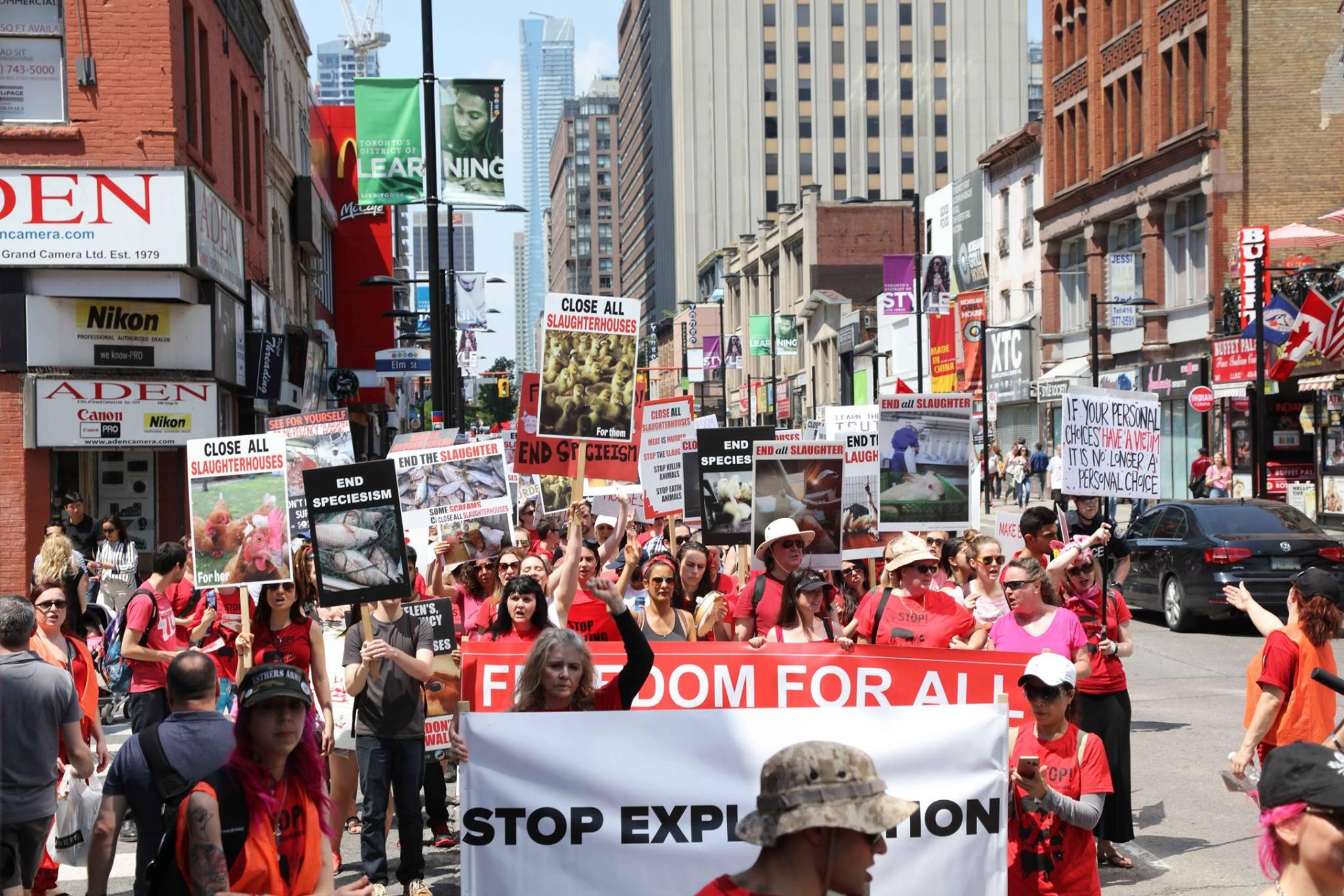 Photo de la Marche pour la fermeture des abattoirs 2017 à Toronto