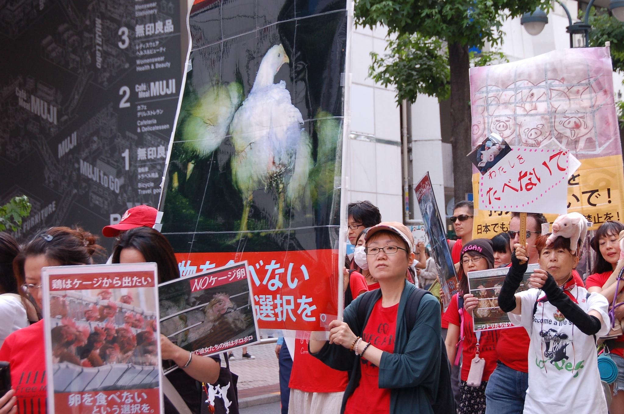 Photo de la Marche pour la fermeture des abattoirs 2017 à Tokyo