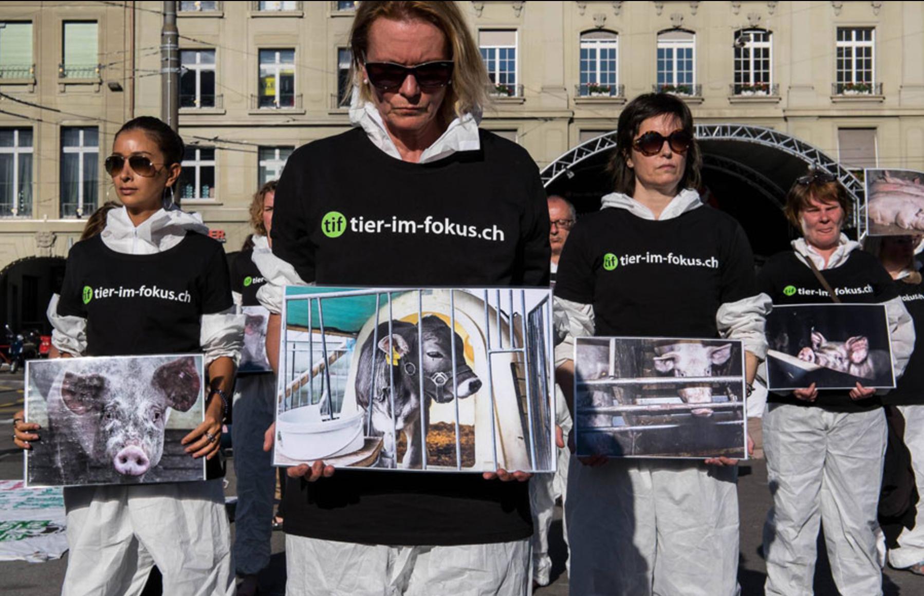 Photo de la Marche pour la fermeture des abattoirs 2016 à Berne