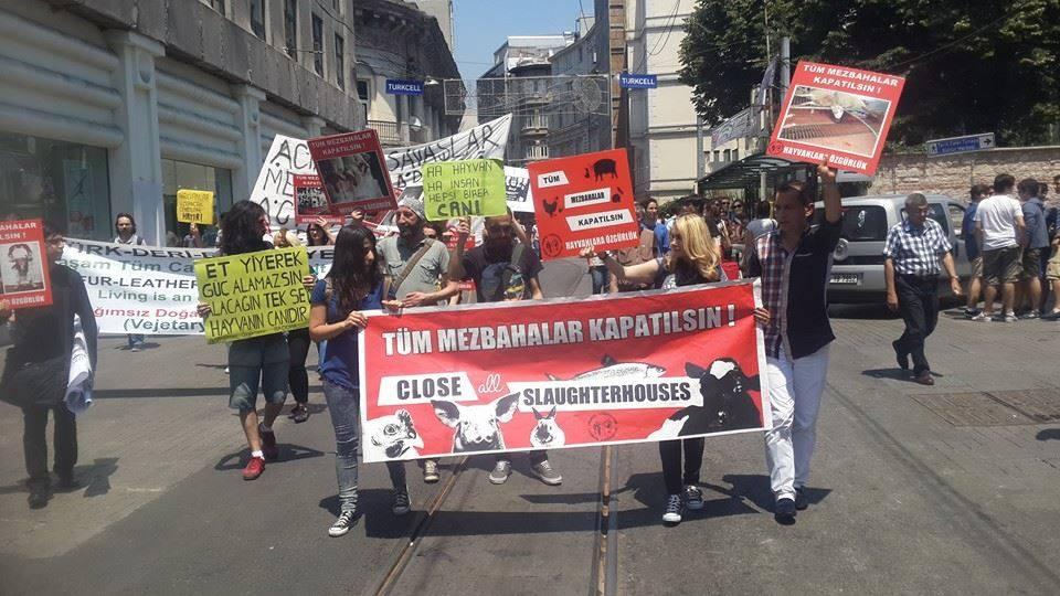 Marche pour la fermeture des abattoirs à Istanbul