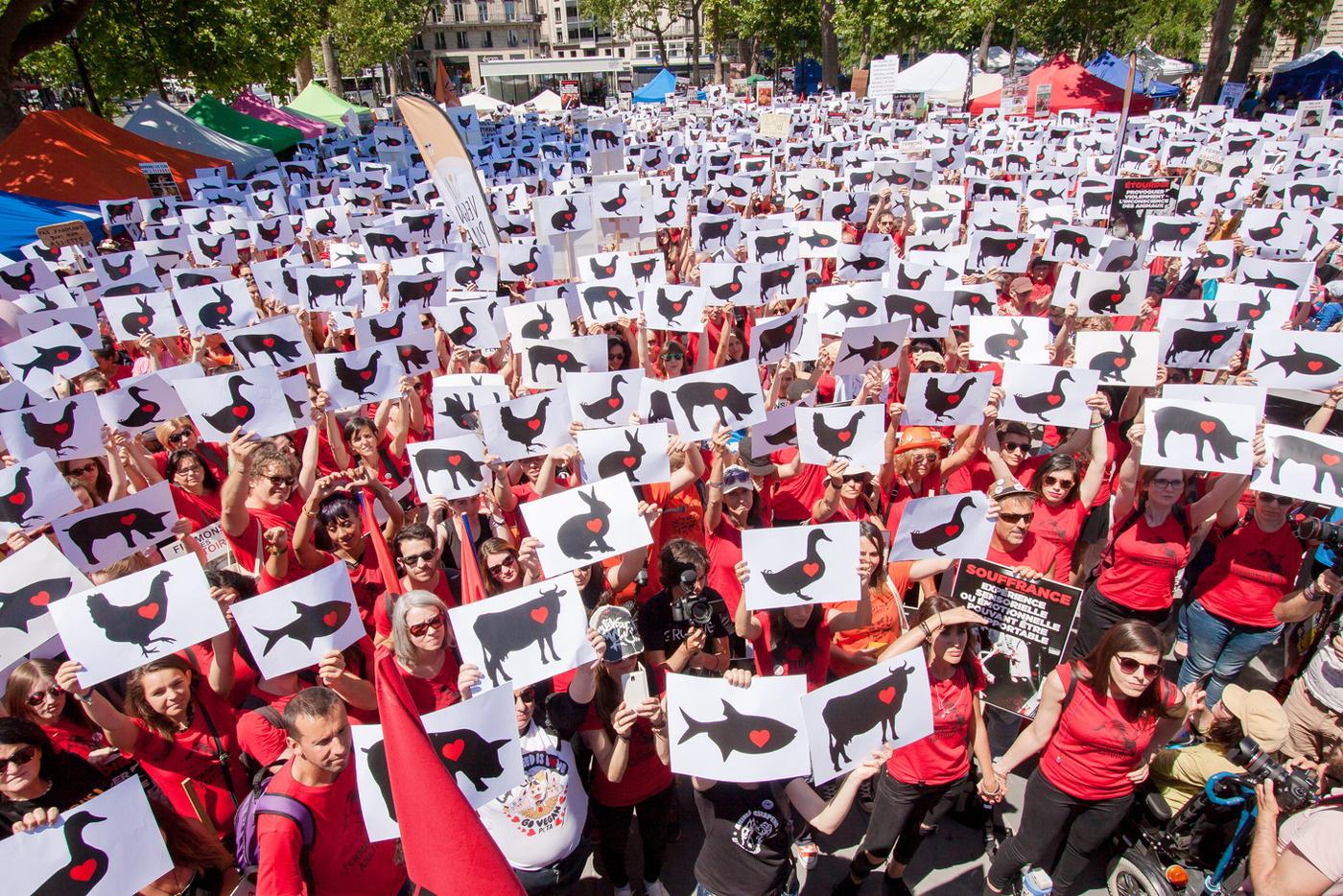 Photo de la Marche pour la fermeture des abattoirs 2016 à Paris
