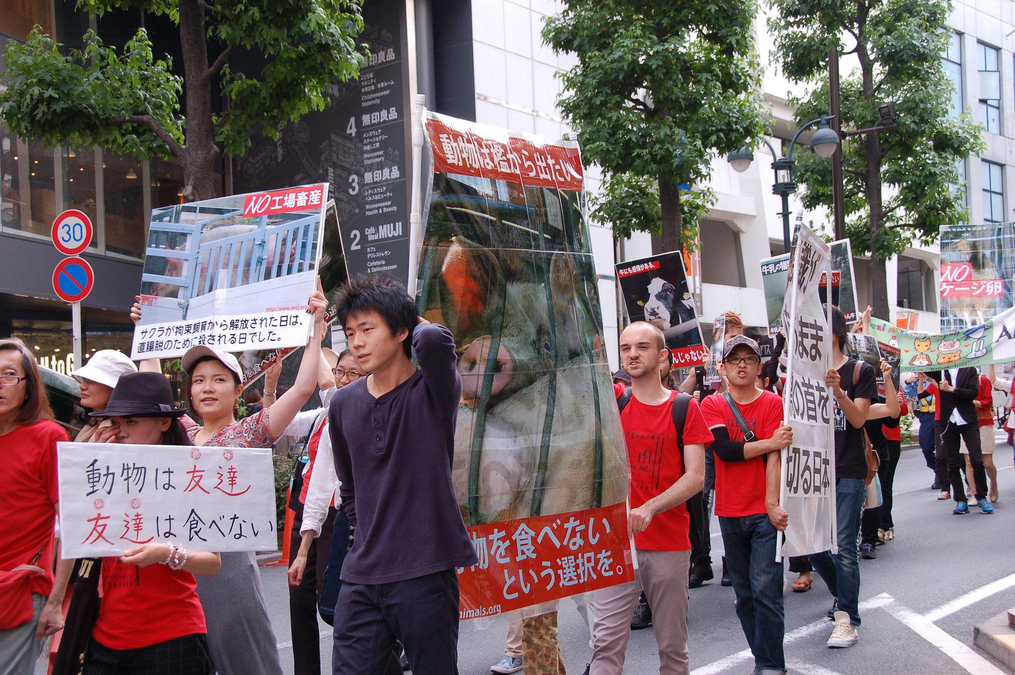 Photo de la Marche pour la fermeture des abattoirs 2016 à Tokyo