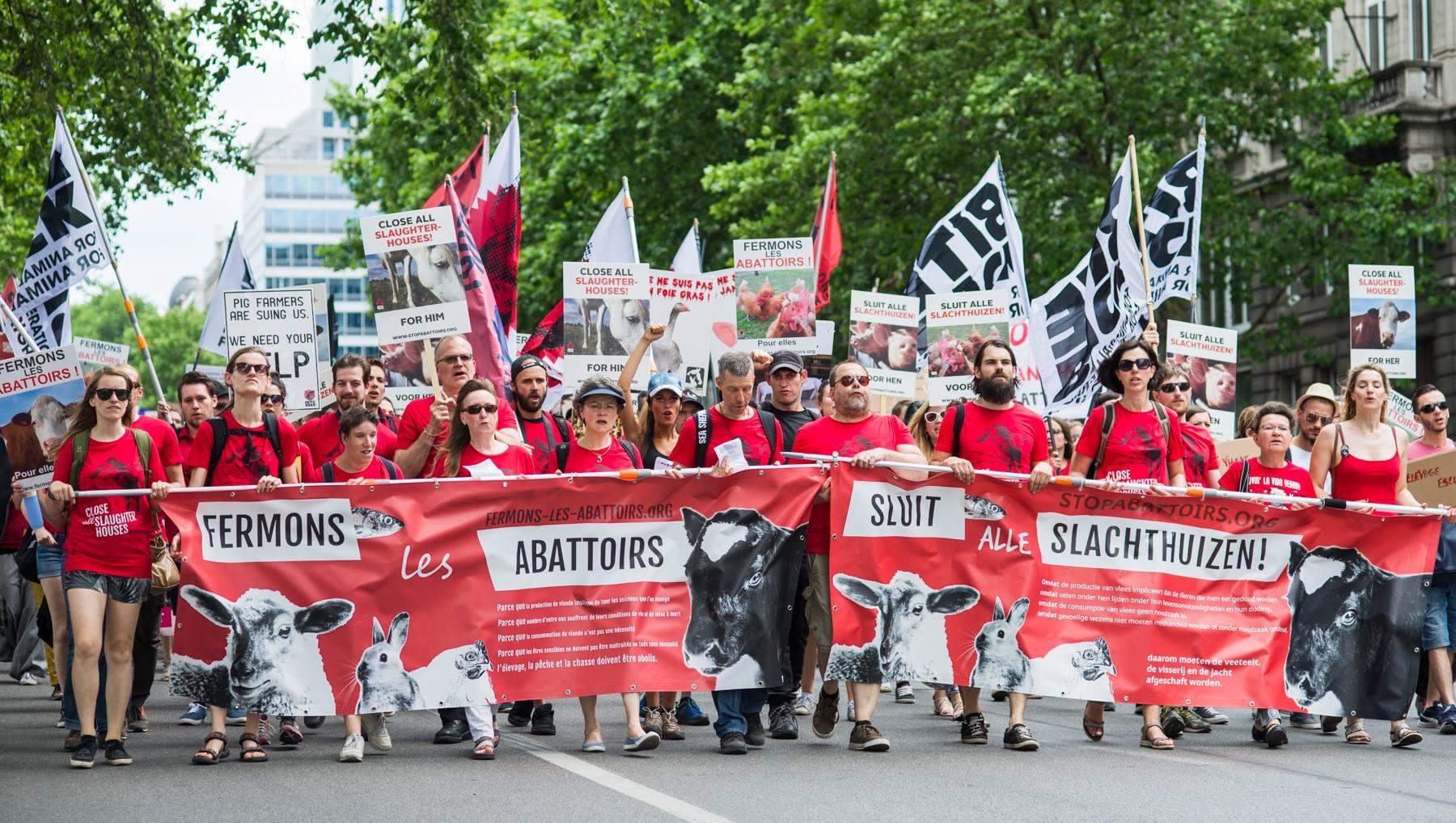 Photo de la Marche pour la fermeture des abattoirs 2017 à Bruxelles
